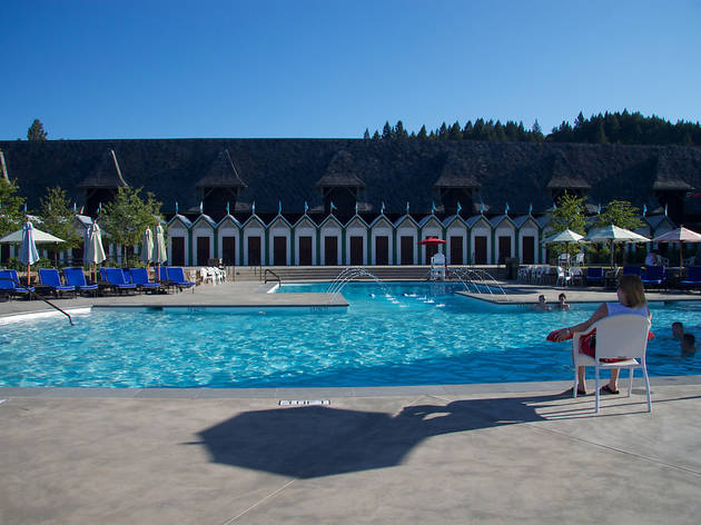The pool at Francis Ford Coppola Winery