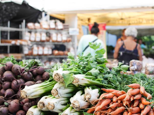 The New York Botanical Garden Farmers Market