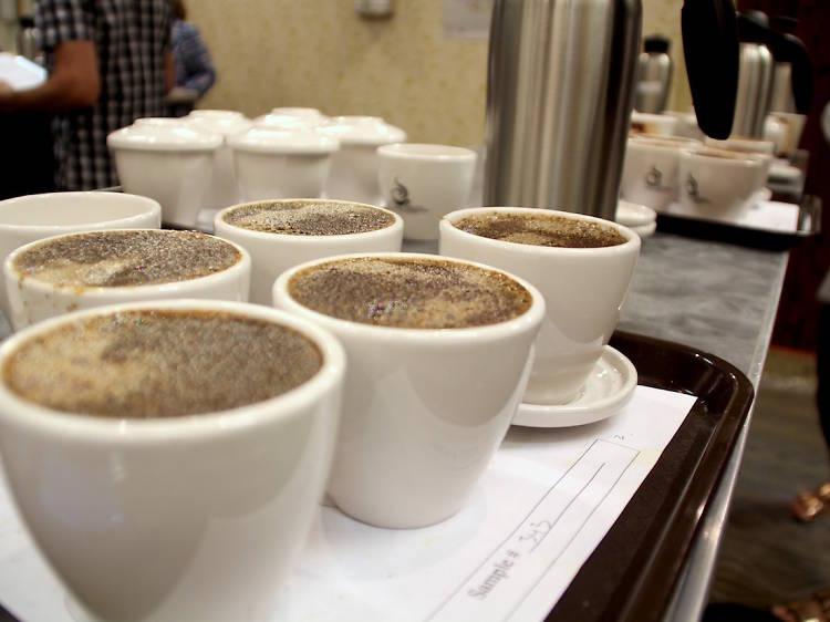 신이 내린 커피 '게이샤커피', 바리스타 챔피언이 있는 센터커피에서 마시기 : 9000원