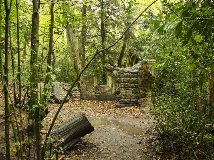 Cox's walk in Sydenham Hill Wood