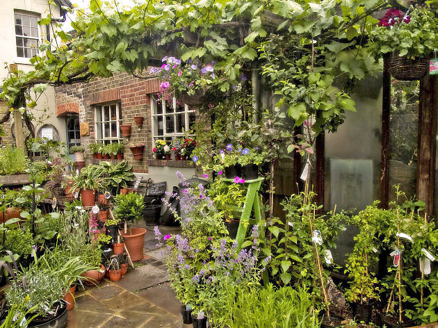 24 luscious garden centres and plant shops in London – London garden ...