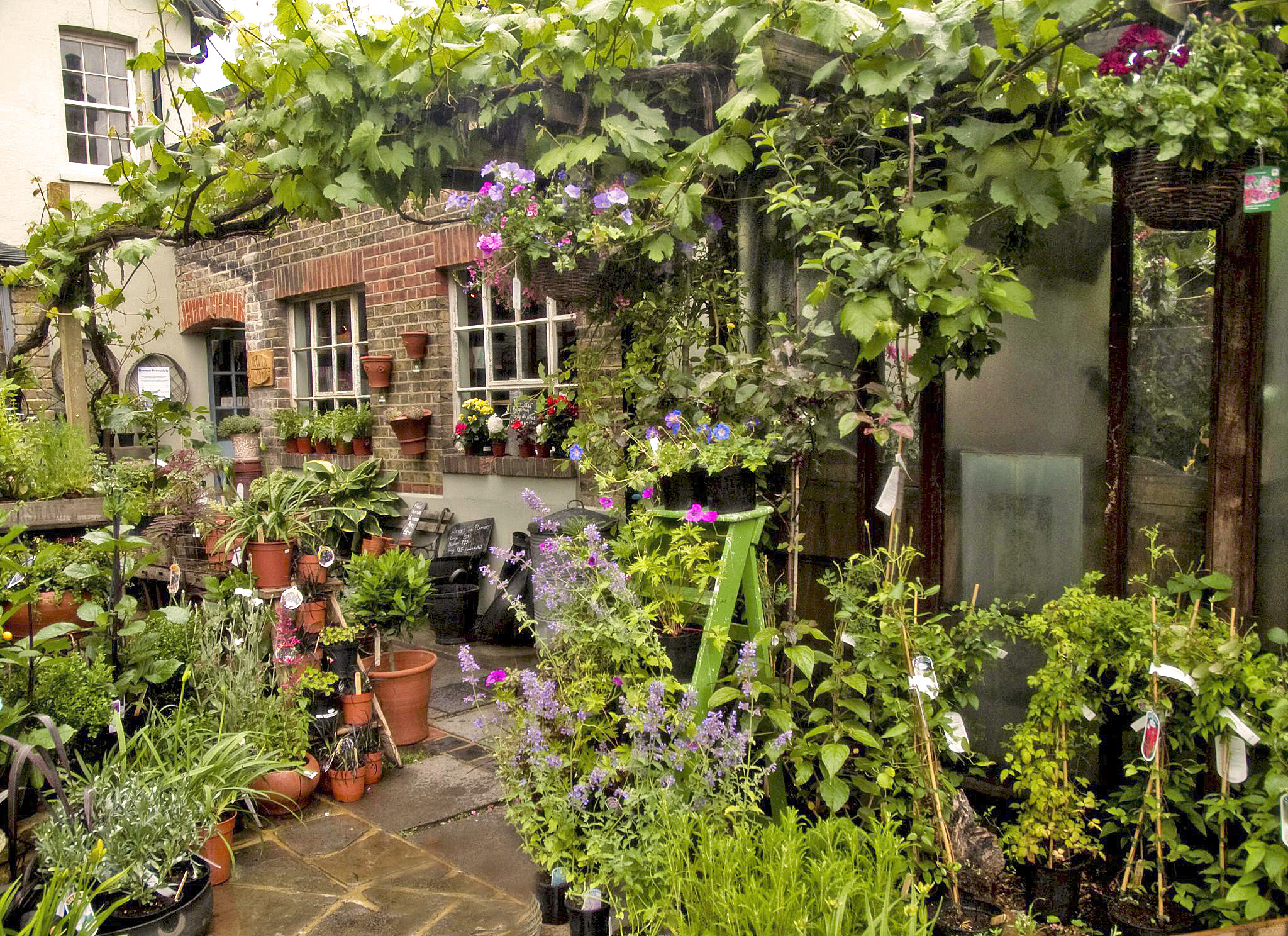 Best Garden Centres and Plant Shops in London | 24 Lush