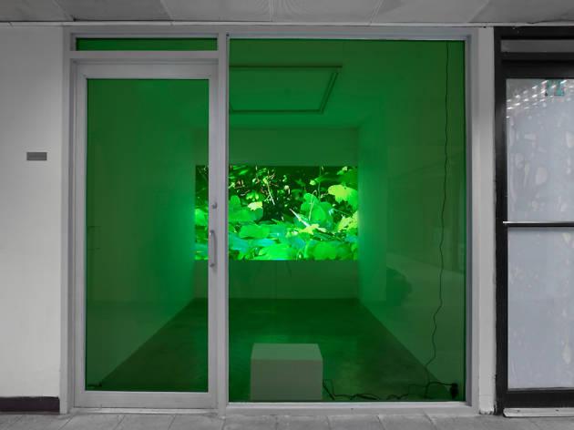 Jeffrey Stark gallery