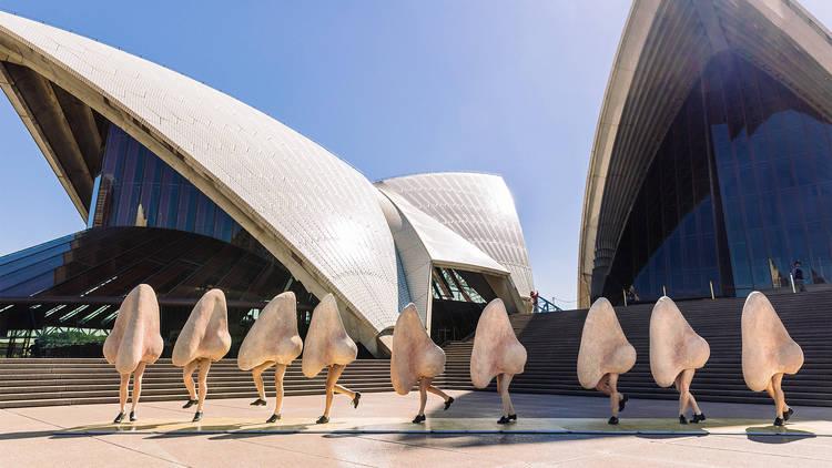 The Nose - Opera Australia