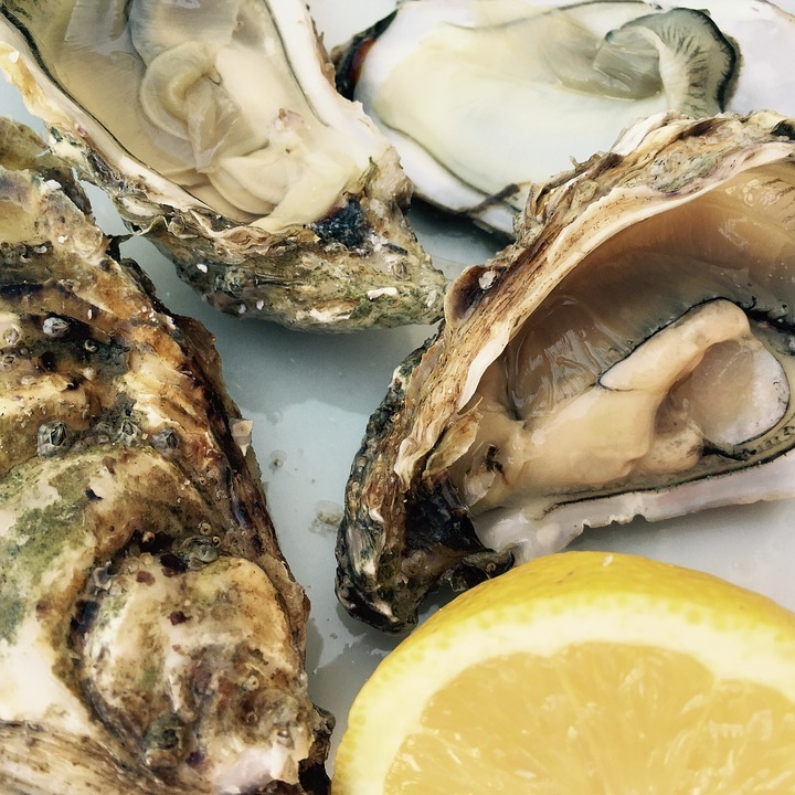 Oyster season begins! Where to found €1 oysters