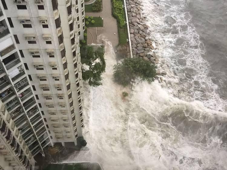 Typhoon Hato, 2017