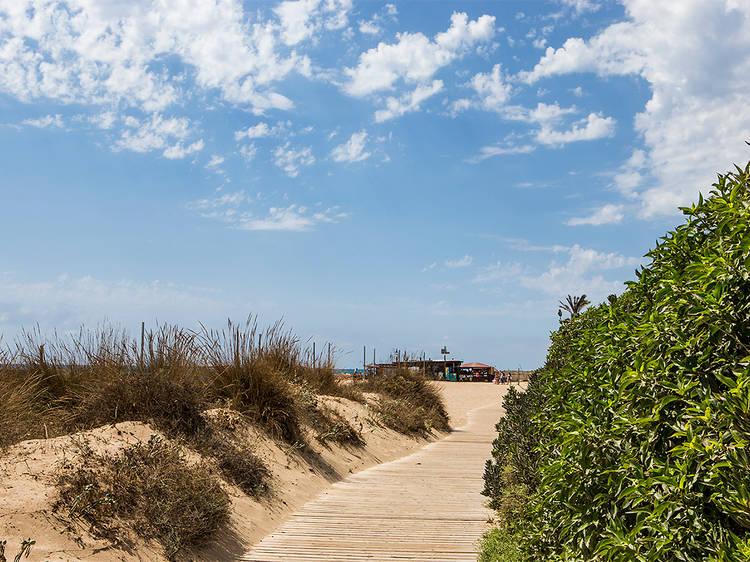 Camps de dunes