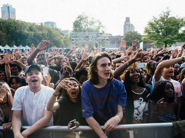 Afropunk Brooklyn 2017