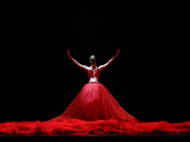 Symphony in C Aus Ballet 2 (Photograph: Jeff Busby)