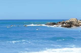 Witness the coastal beauty of the East coast