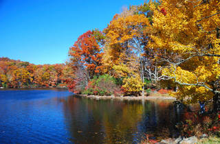 Bear Mountain State Park fall foliage cruise