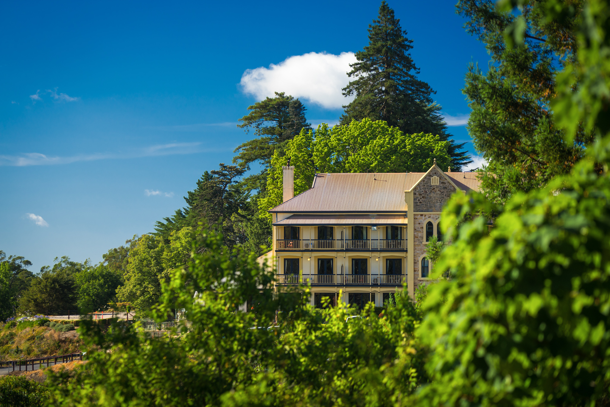Mount Lofty House
