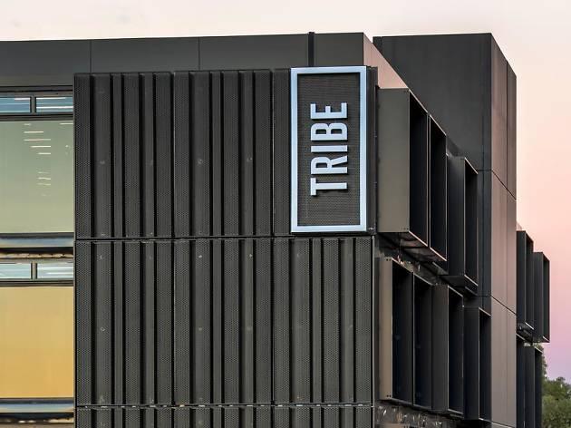 Tribe Perth