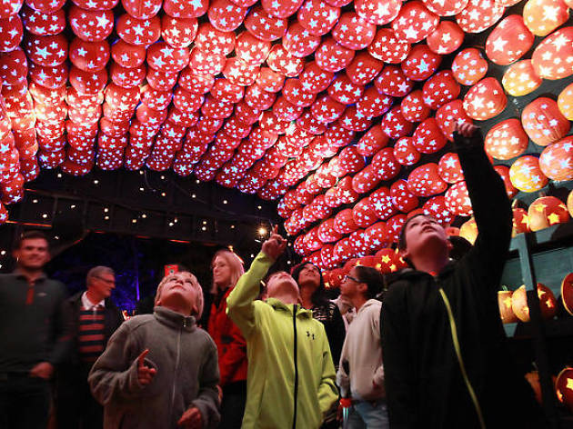 Ogle more than 7,000 glowing pumpkins