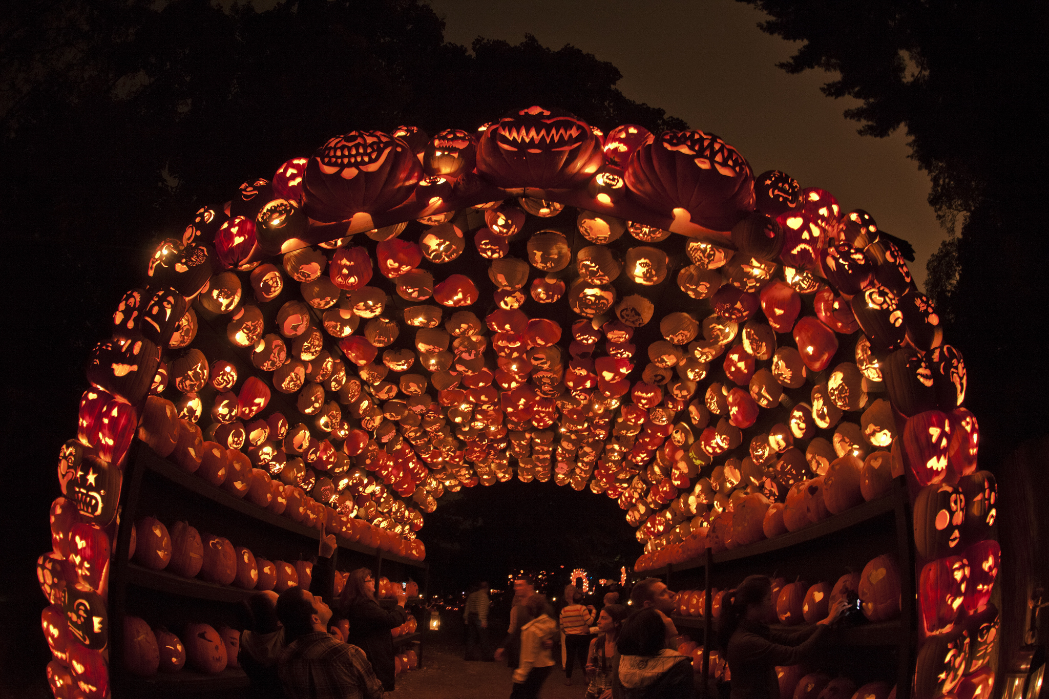 Tickets for the gourd-eous Great Jack O'Lantern Blaze go on sale this Tuesday