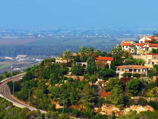 An Israeli Wine Guide To Zichron Ya Akov