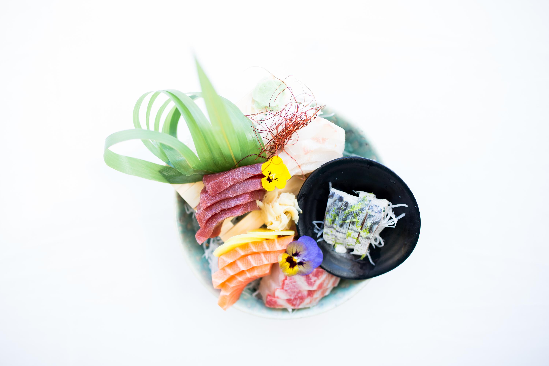 Sashimi do Terra