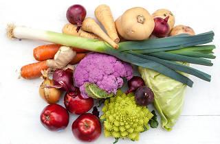 Introdução à Alimentação Vegetariana