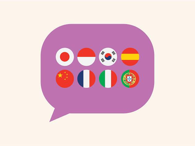 La Lingua Language School