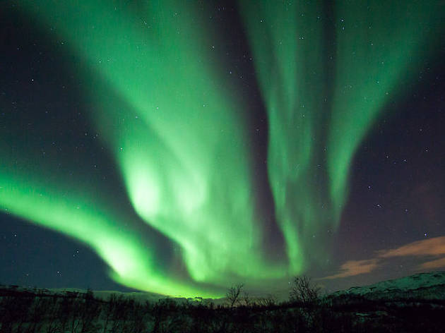 can you see the northern lights tonight