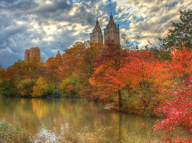 Best things to do in the fall in NYC