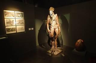 (Statue d'Alien © Nicolas Hecht)