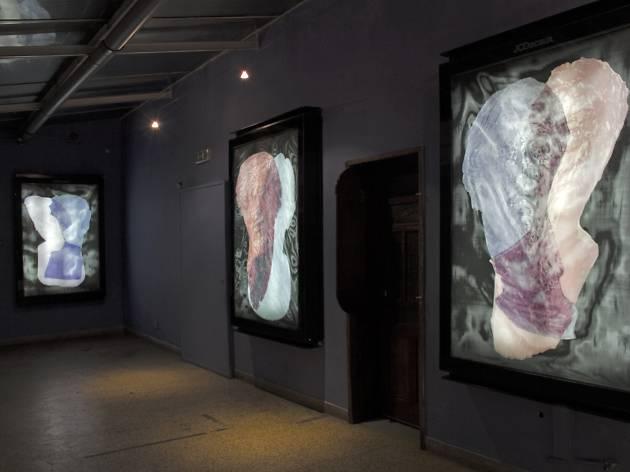 Mupi Gallery