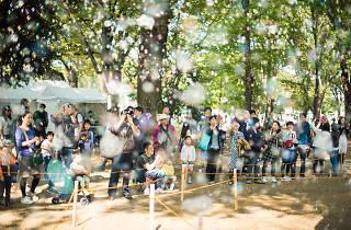 上野「文化の杜」《TOKYO数寄フェス》