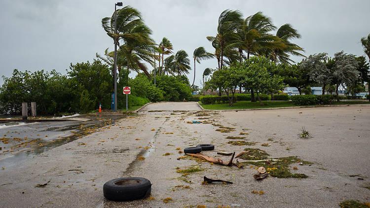 Help Hurricane Irma victims