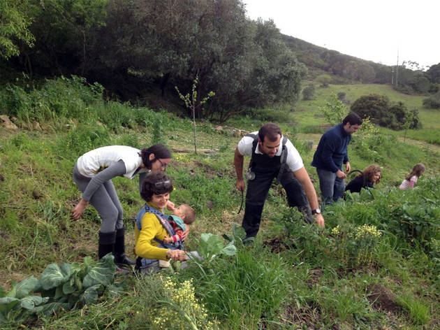 Biovilla Sustentabilidade