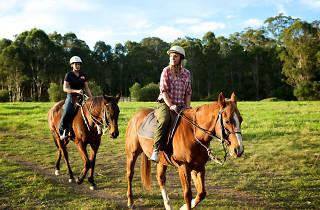 Scenic NSW Horse Riding Centre