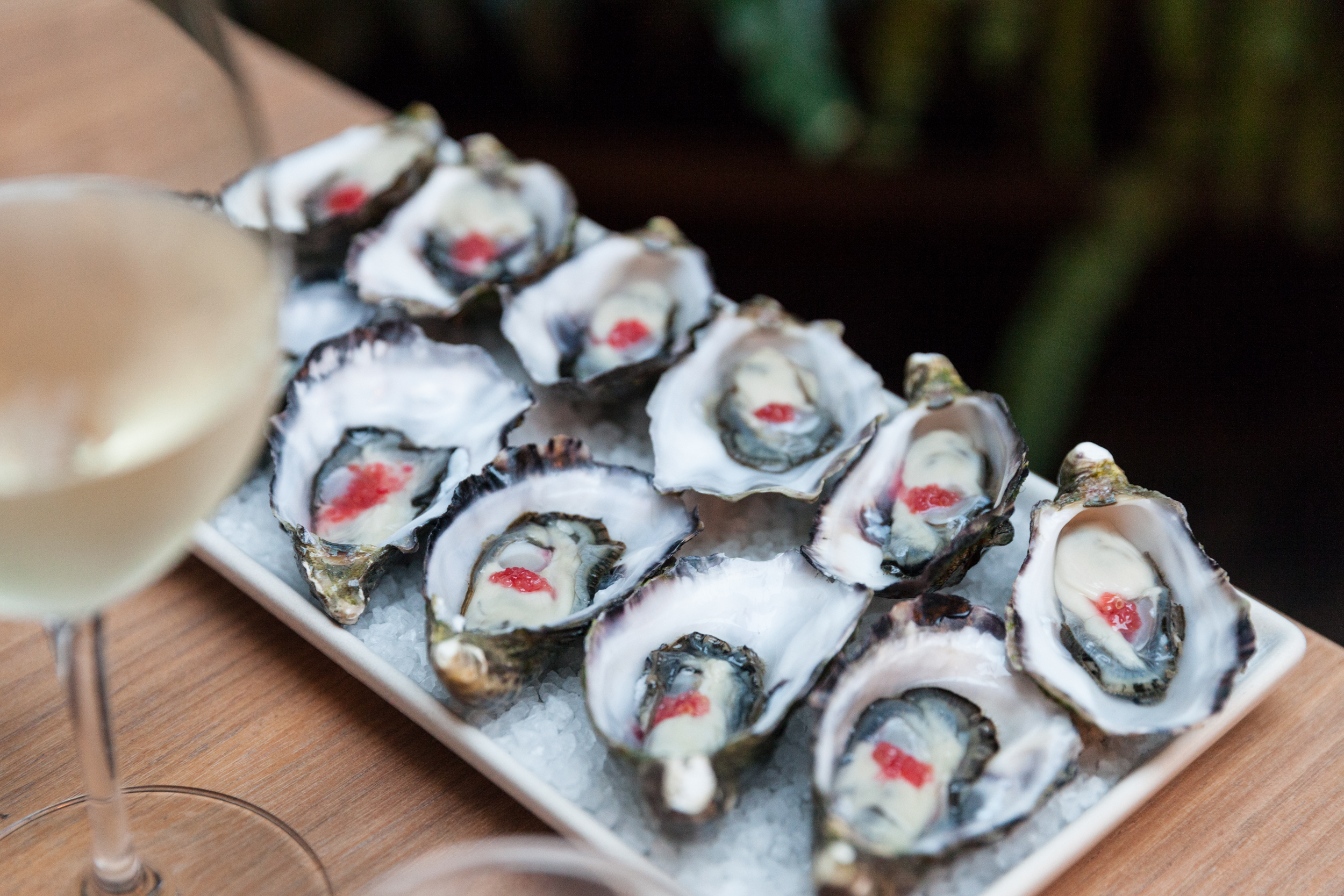Coffin Bay Oysters at Feathers Hotel