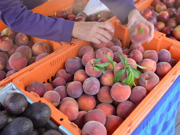 Peaches in a tray at Parramatta Farmers' Markets