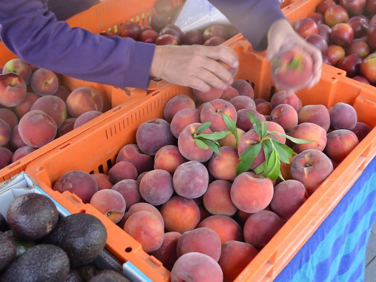 Parramatta Farmers' Markets