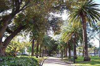 Prince Alfred Square Parramatta