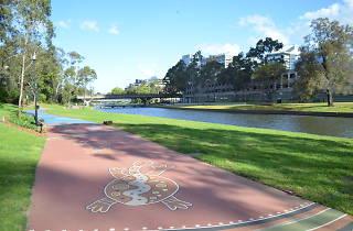 Parramatta River Foreshore Walk