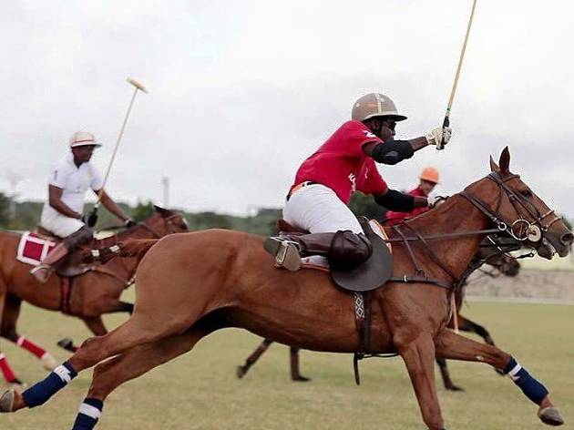 Hear the thundering of hooves at Accra Polo Club