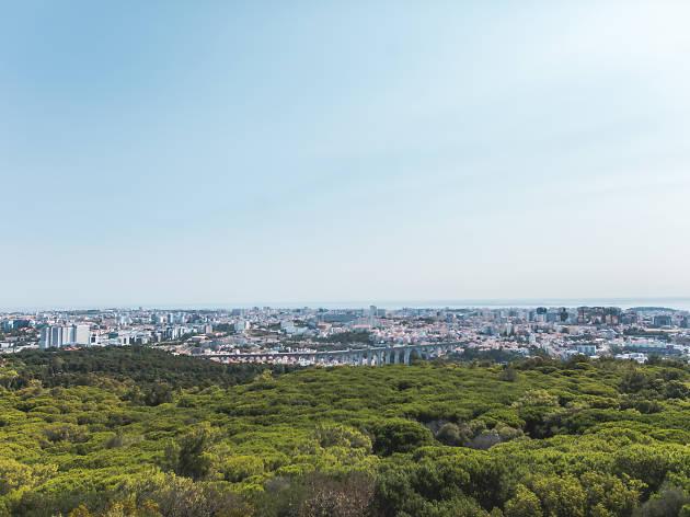 A vista do Panorâmico de Monsanto, o novo miradouro da cidade