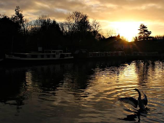 Explore: Tottenham Marshes
