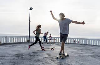 Longboard Dancing Sunsets - Sealand Santa Cruz