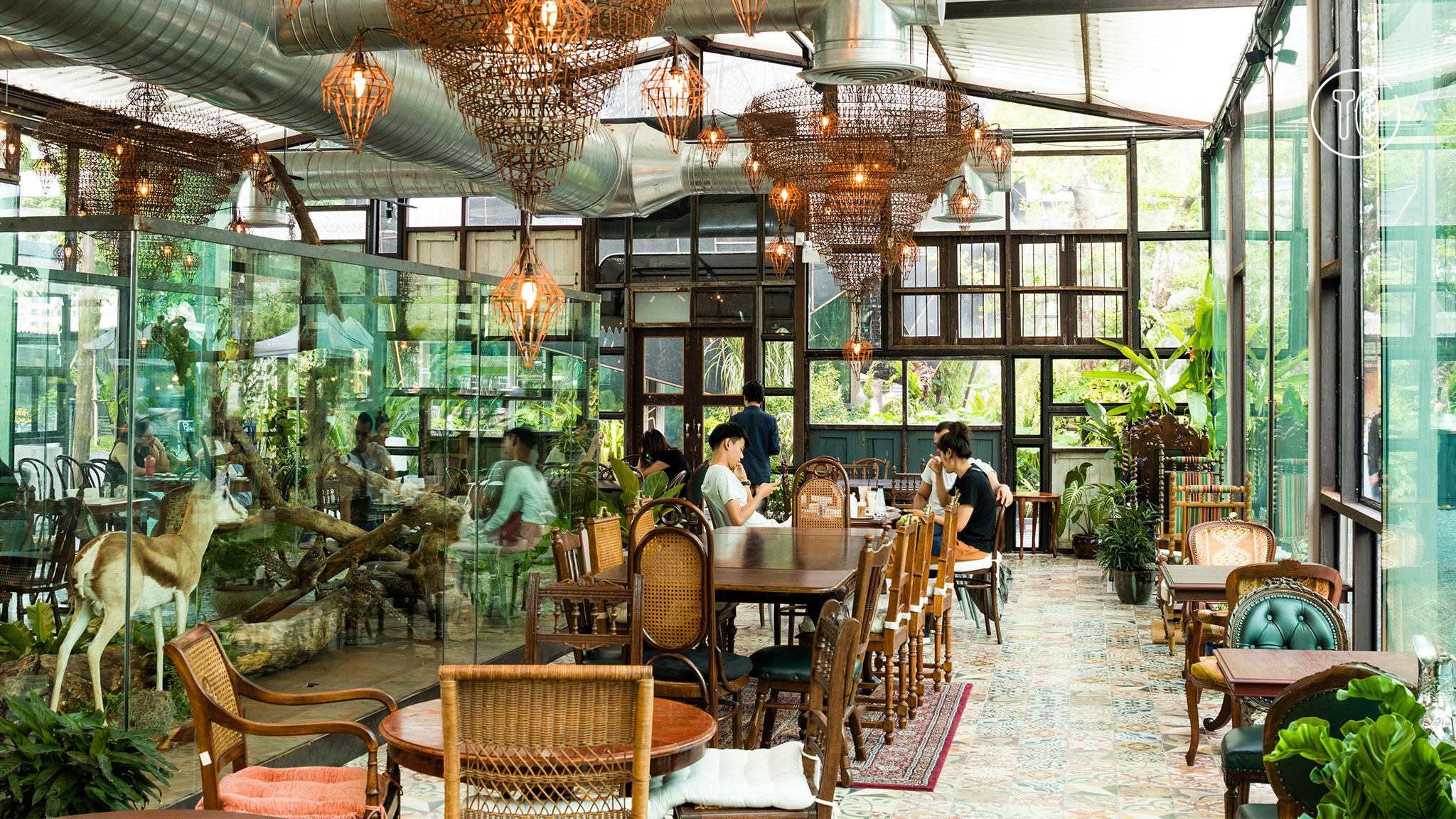 Thé at Chang Chui tea