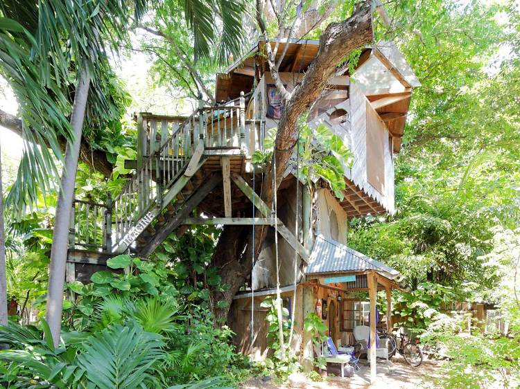 Miami, FL: The treehouse on a farm