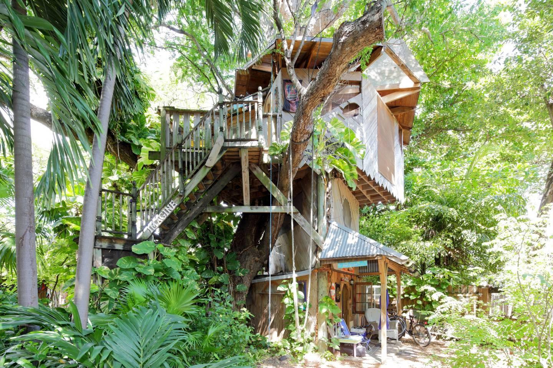 Miami treehouse