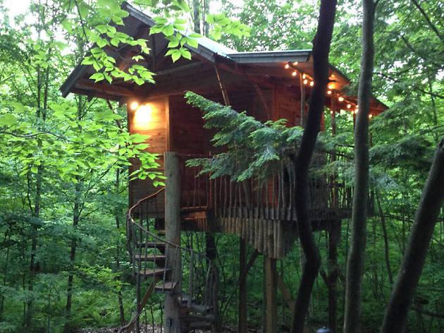Middle Grove, NY treehouse