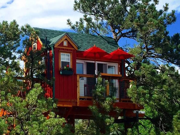 Lyons, CO: The little red treehouse