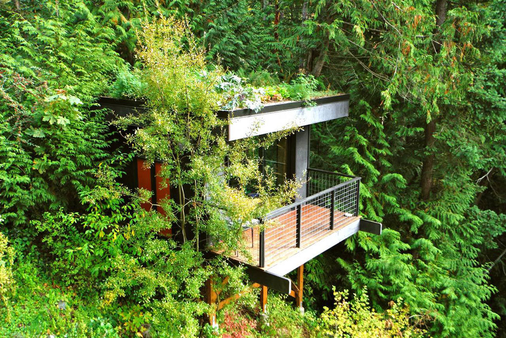 Bellingham, WA treehouse