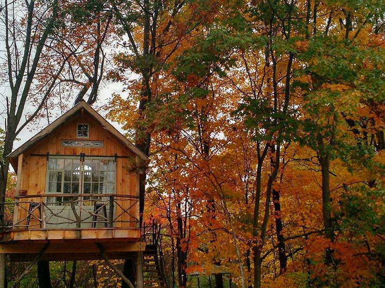 Argyle, NY: The whispering wind treehouse
