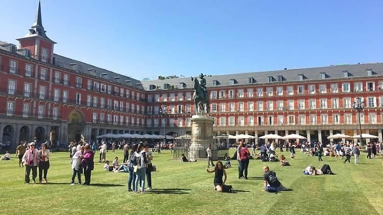 Plaza Mayor césped