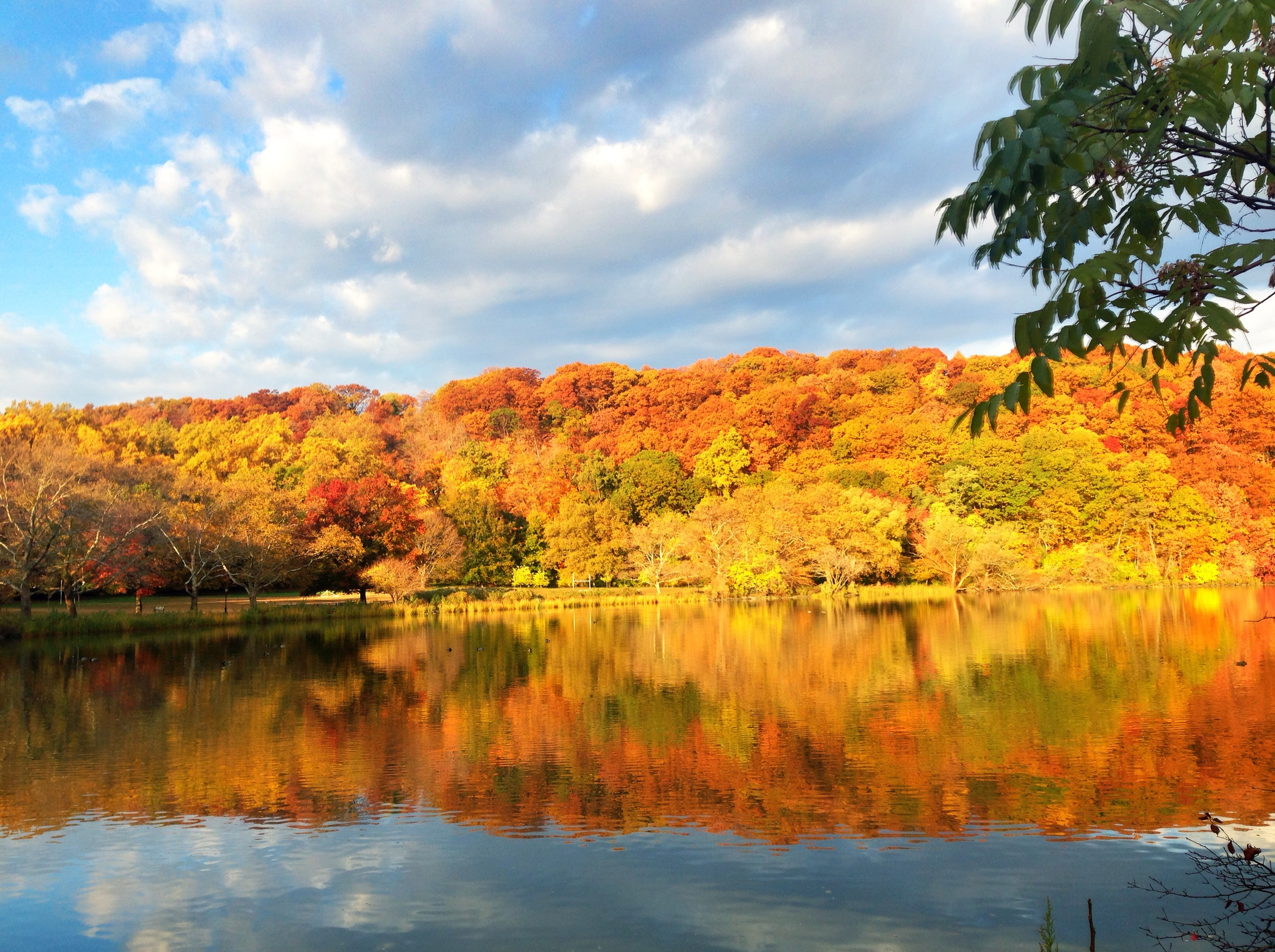 56 incredible things to do in NYC in October