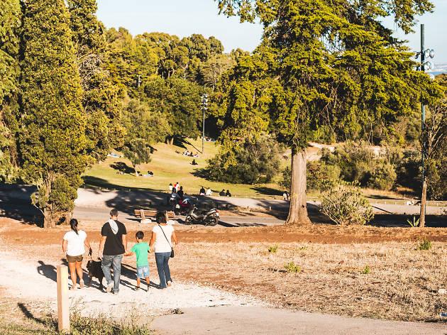 Parque do Penedo